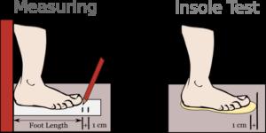 Shoe size fit